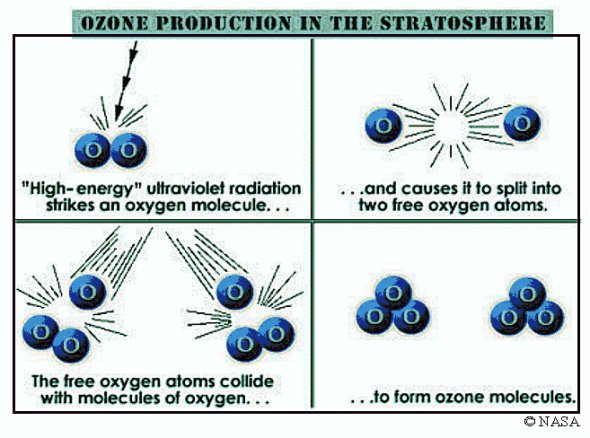 effects ozone layer depletion