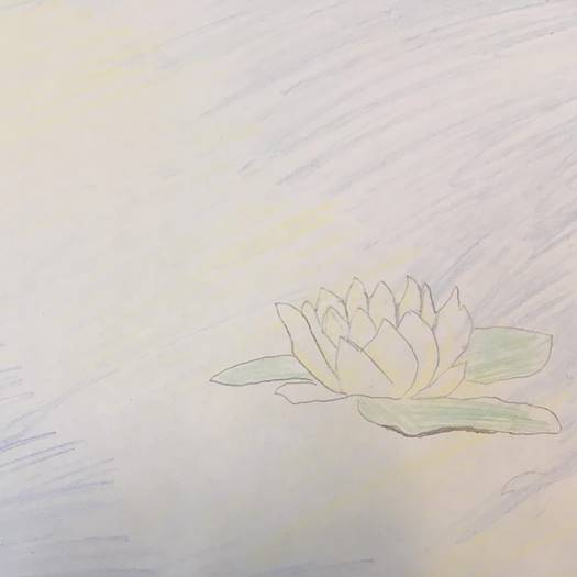 Drawing of a waterlilly from the Students and staff participation in the 2018 'Inktober'